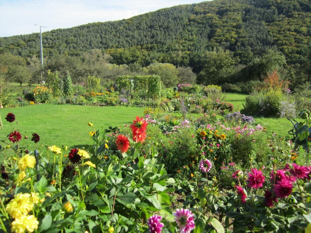 Der Anblick vom Eingang auf die Weite des Gartens