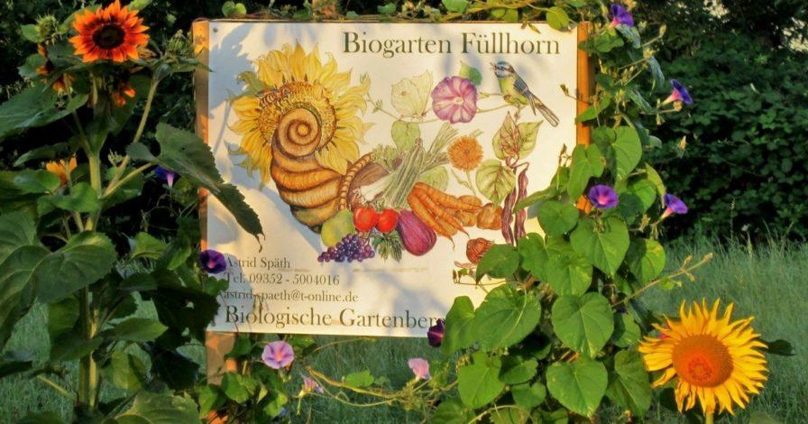 Biogarten Füllhorn (11)
