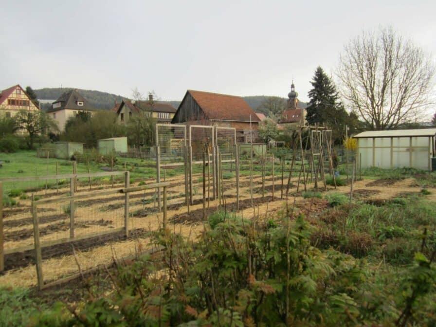 Biogarten mit Strohwegen