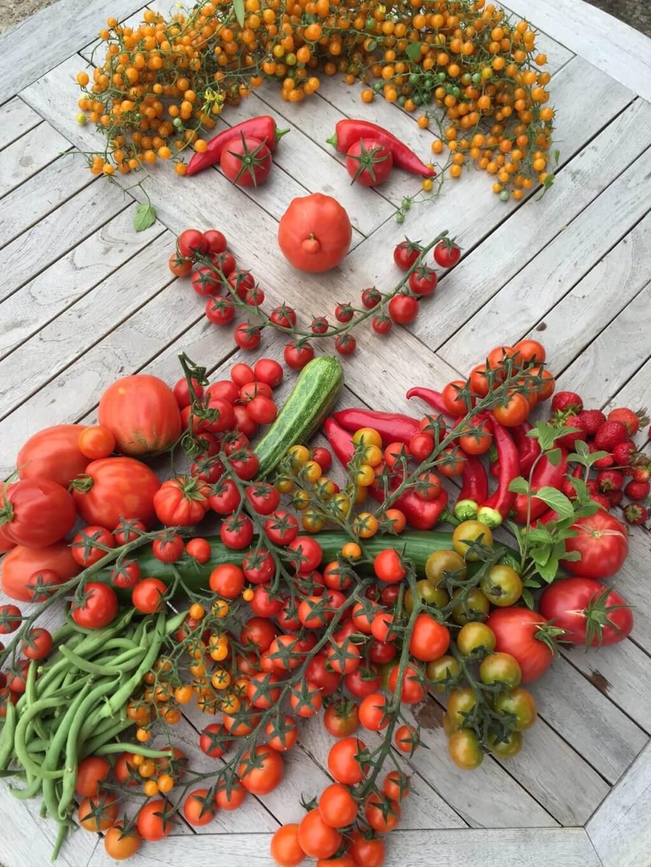 Tomatenmensch von Annett
