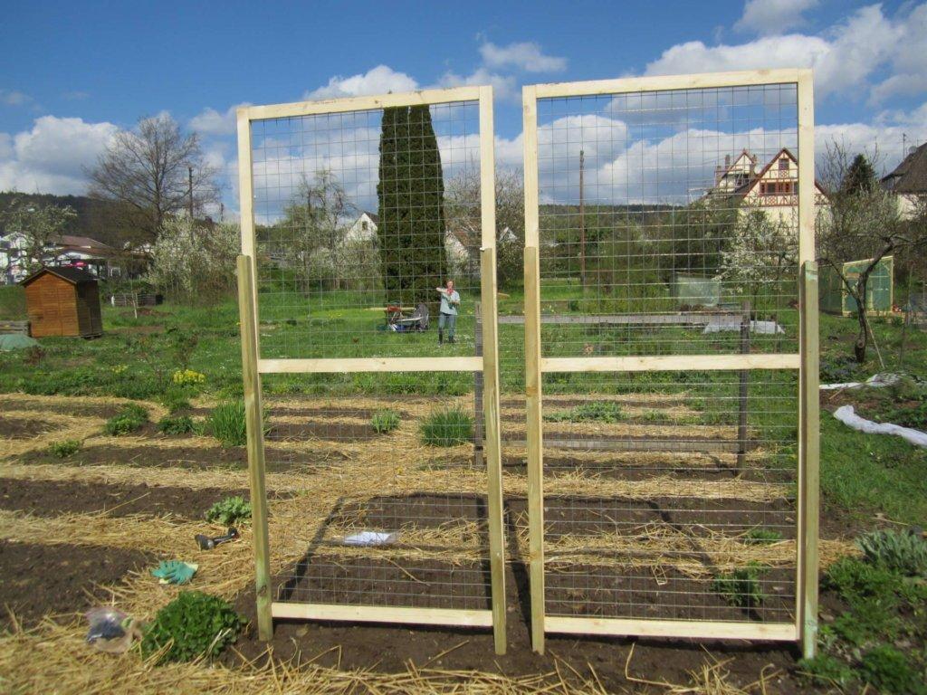 Zwei neue Gitter für Feuerbohnen, von Hannes gebaut, dem Mann meiner Freundin Eva.