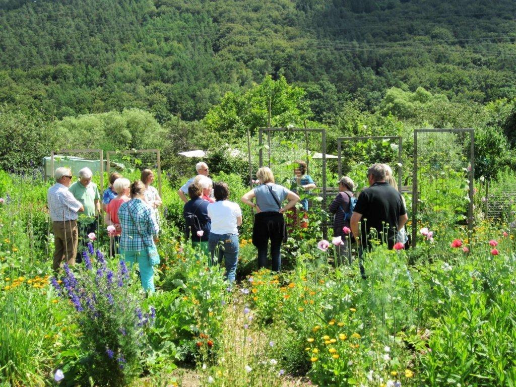 Noch mehr Gärtner wollen Auskunft