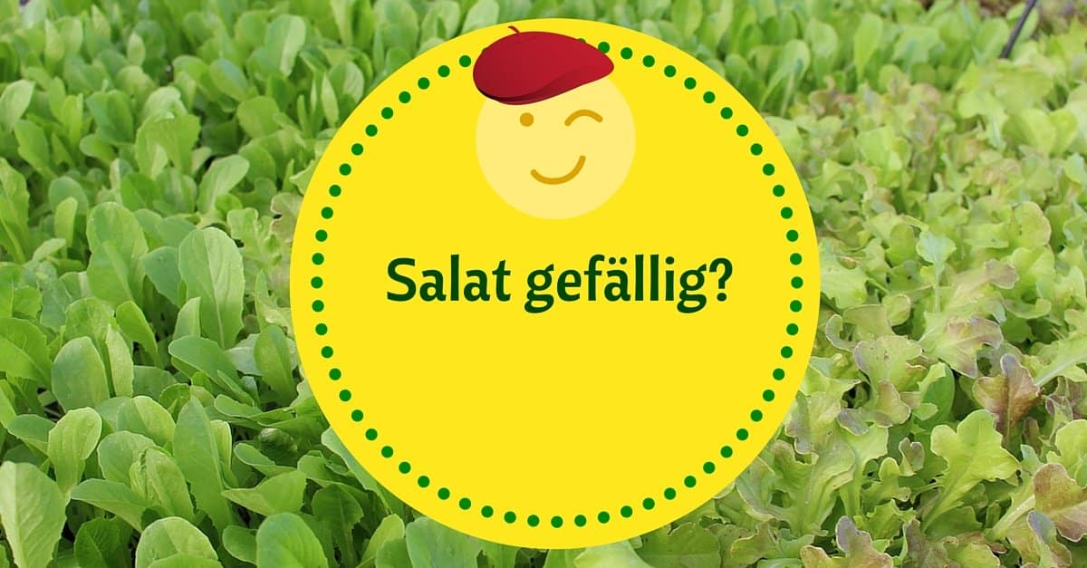 Salat gefällig- (2)