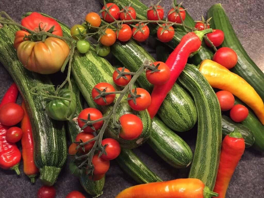 tomaten-und-zucchini-im-ueberfluss-von-annett