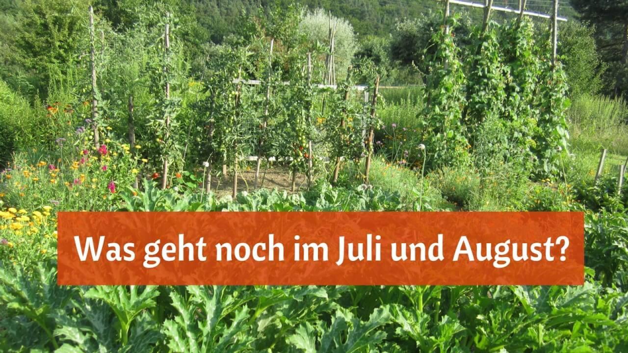 Charmant Füllhorn Seite Ideen - Malvorlagen Von Tieren - ngadi.info