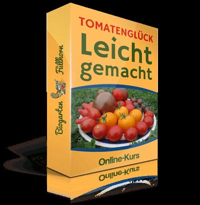 tomatenkurs-mit-logo
